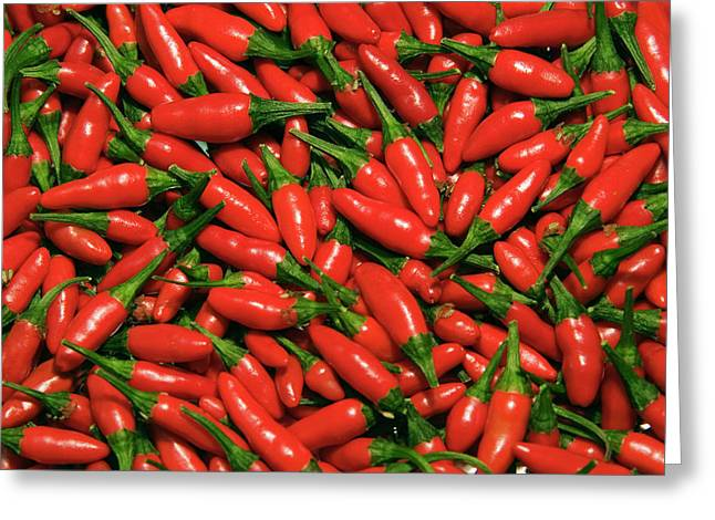 Hot Chili Peppers (capsicum L Greeting Card