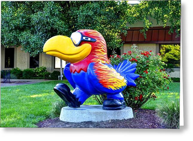 Lawrence kansas greeting cards page 6 of 8 fine art america hot hawk greeting card m4hsunfo
