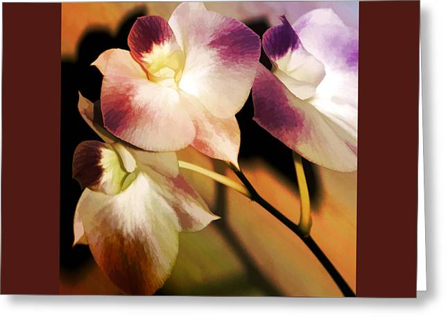 Hot Orchid Nights Greeting Card by Holly Kempe