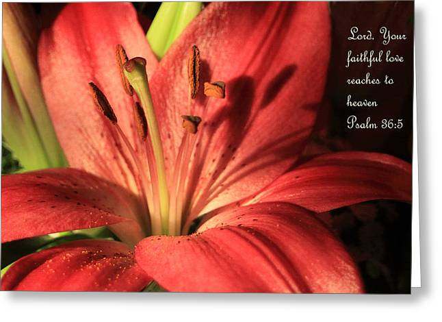 Hot Red Lily Ps. 36v5 Greeting Card by Linda Phelps