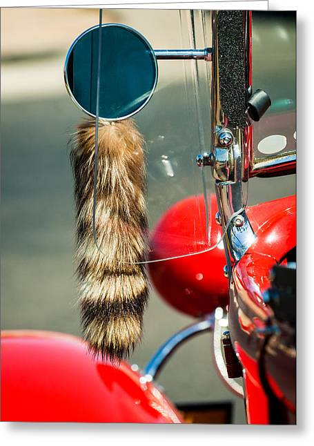 Hot Rod Coon's Tail Greeting Card by Jill Reger
