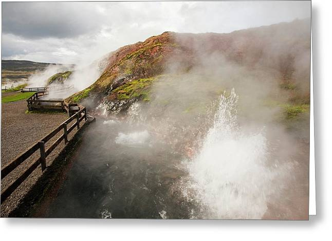 Hot Spring Greeting Card by Ashley Cooper