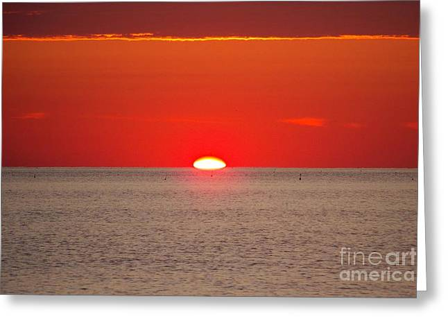 Hot Sun Seems To Melt Into The Sea Greeting Card by Eunice Miller