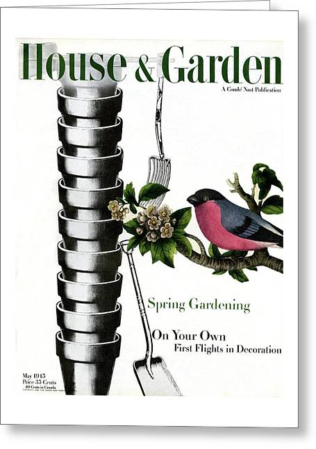 House And Garden Cover Featuring Pots And A Bird Greeting Card