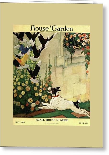 House And Garden Small House Number Cover Greeting Card by Charles Livingston Bull