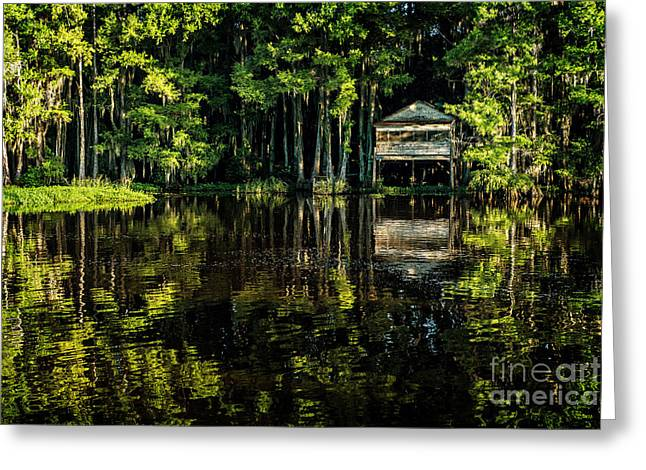 House In The Swamp Greeting Card by Tamyra Ayles