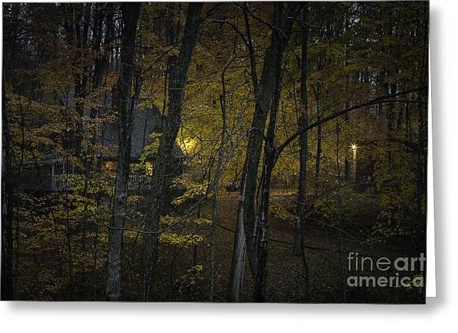 House In The Woods Greeting Card by Michele Steffey