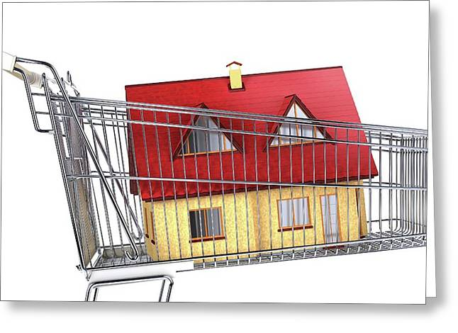 House Inside A Shopping Trolley Greeting Card by Leonello Calvetti