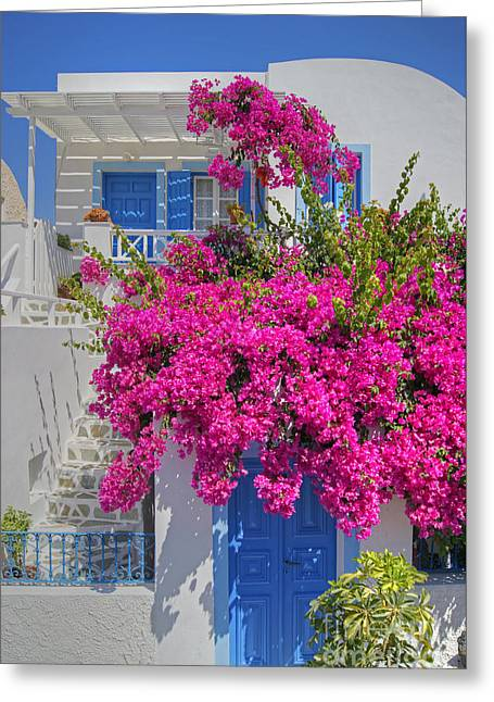 House Of Bougainvillea Greeting Card