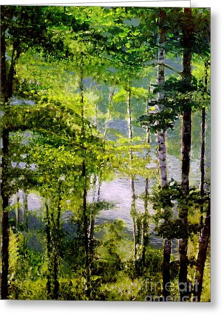 Wisconsin Birch Trees On Lake  Greeting Card