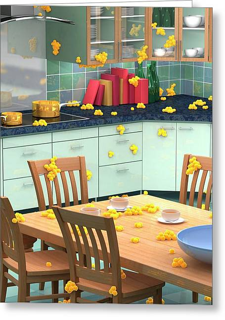 Household Bacteria Cross-contamination Greeting Card by Animated Healthcare Ltd