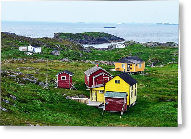 Houses On Little Fogo Island Newfoundland Greeting Card by Lisa Phillips