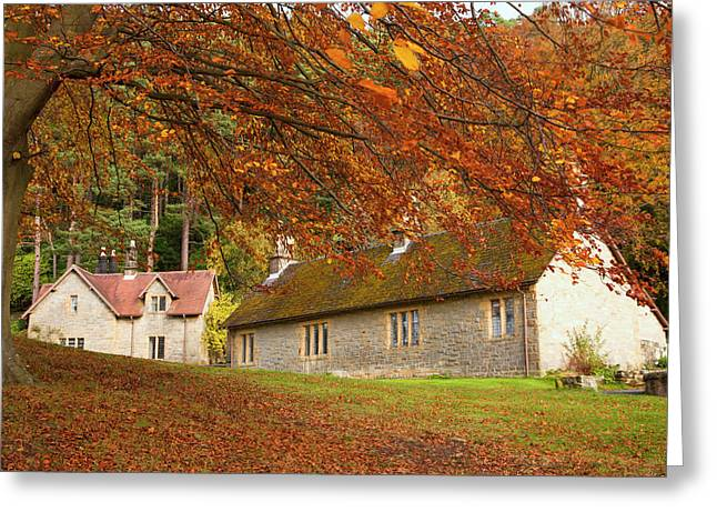 Houses With Trees In Autumn Colours Greeting Card by John Short