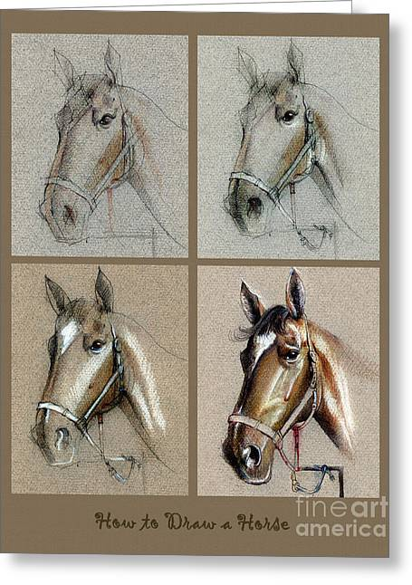 How To Draw A Horse Portrait Greeting Card by Daliana Pacuraru