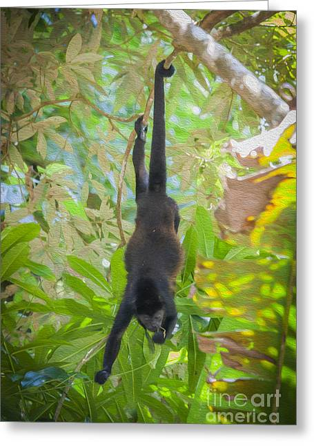 Howler Monkey Eating Greeting Card by Patricia Hofmeester