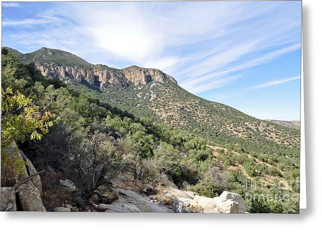 Greeting Card featuring the photograph Huachuca Mountains by Gina Savage