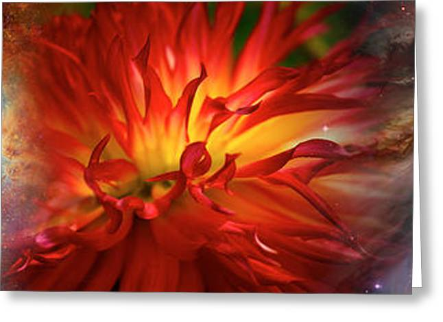 Hubble Galaxy With Red Chrysanthemums Greeting Card