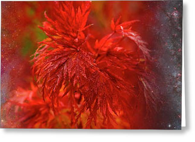 Hubble Galaxy With Red Maple Foliage Greeting Card