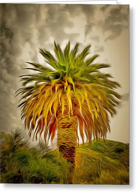 Huge Palm Dark Skies Greeting Card
