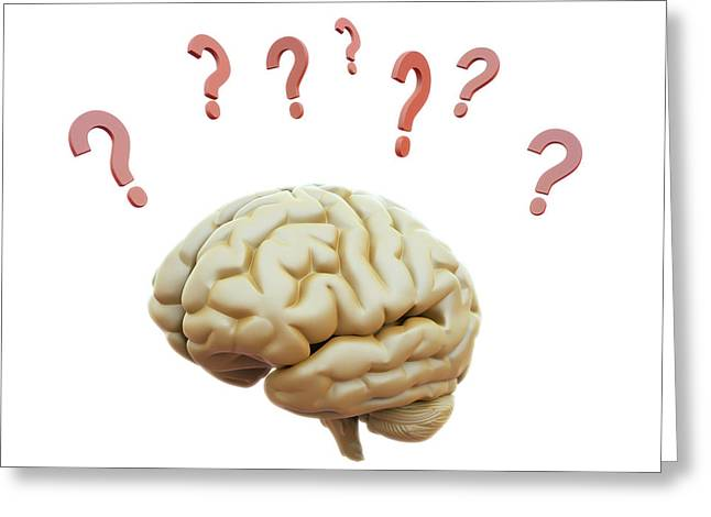 Human Brain And Question Marks Greeting Card