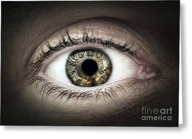 Human Eye Macro Greeting Card