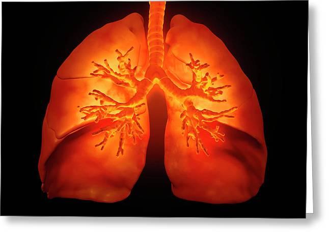 Human Lungs Greeting Card by Andrzej Wojcicki