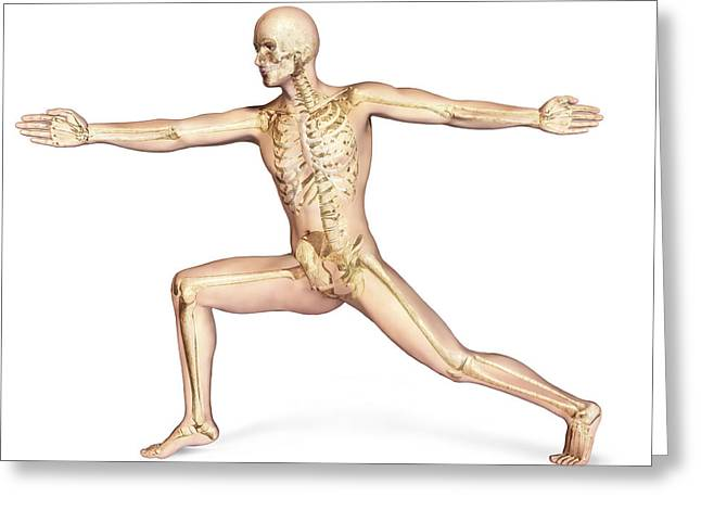 Human Male In Athletic Dynamic Posture Greeting Card by Leonello Calvetti