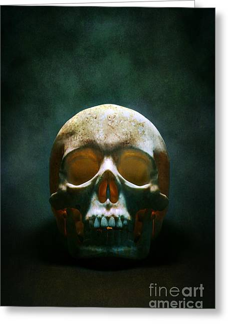 Human Skull Greeting Card by Carlos Caetano
