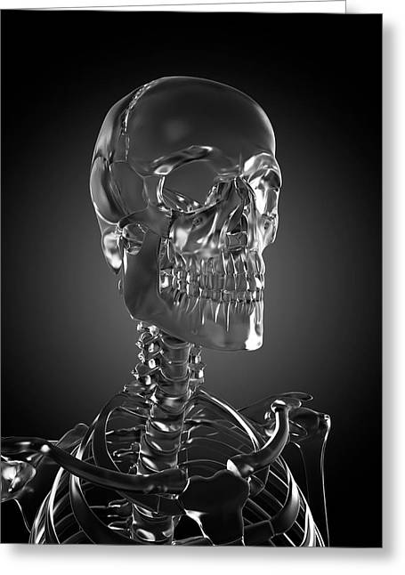Human Skull Rendered In Glass Greeting Card by Sebastian Kaulitzki/science Photo Library