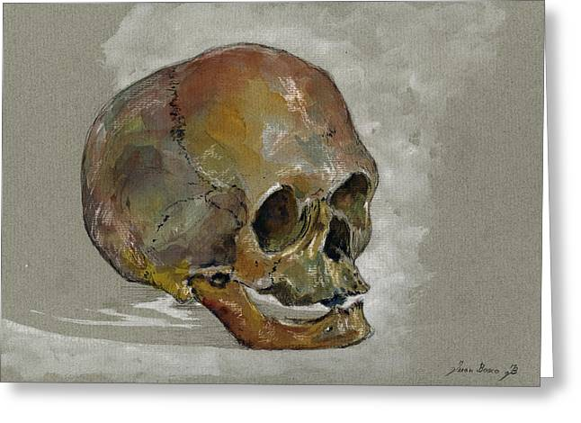 Human Skull Study Greeting Card by Juan  Bosco
