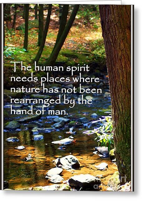 Human Spirit Needs Greeting Card by Patti Whitten