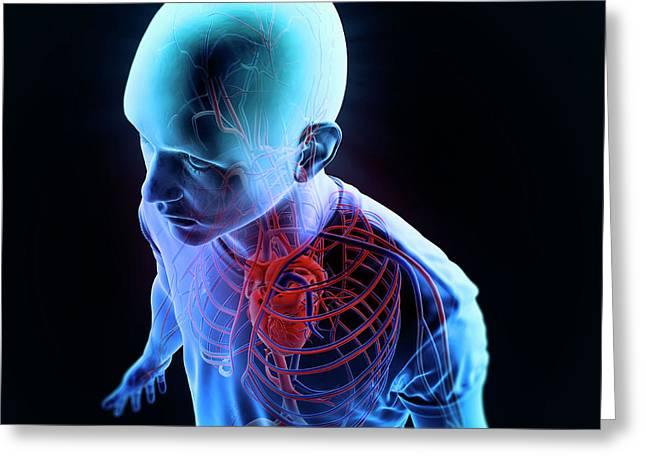 Human Vascular System Greeting Card by Andrzej Wojcicki