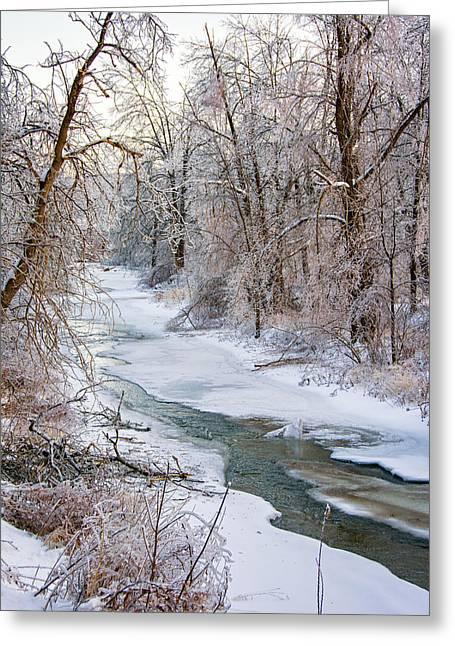 Humber River Winter Greeting Card by Steve Harrington