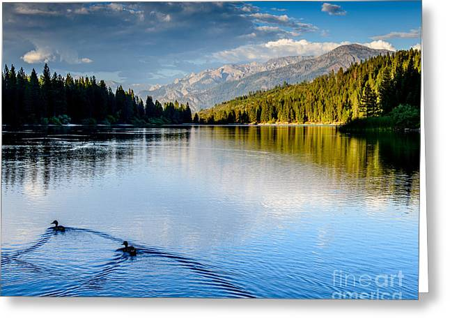 Hume Lake Evening Greeting Card