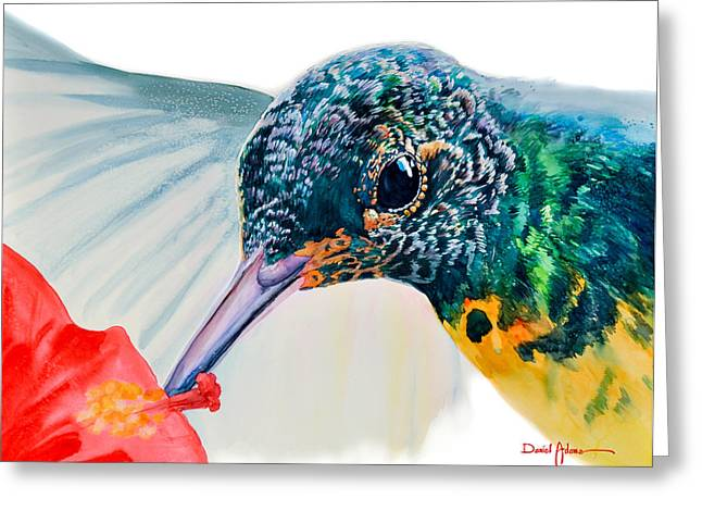 Da120 Hummer Face Daniel Adams  Greeting Card