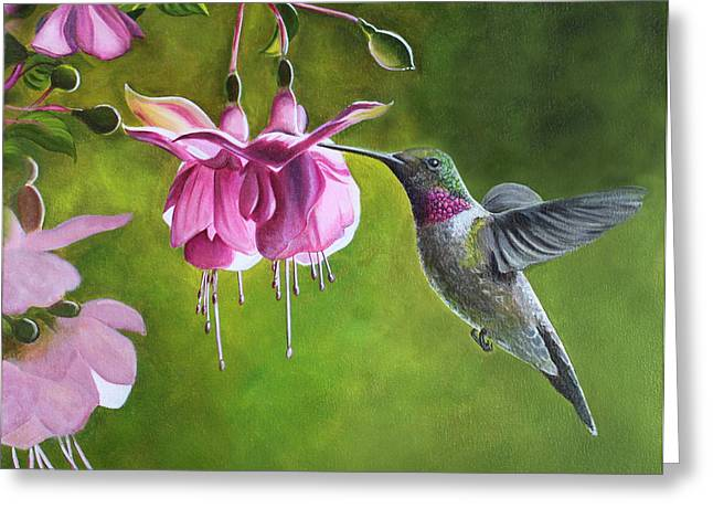 Hummingbird And Fuschia Greeting Card