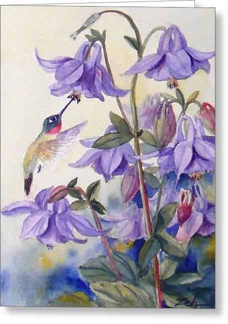 Hummingbird And Purple Columbine Greeting Card by Janet  Zeh