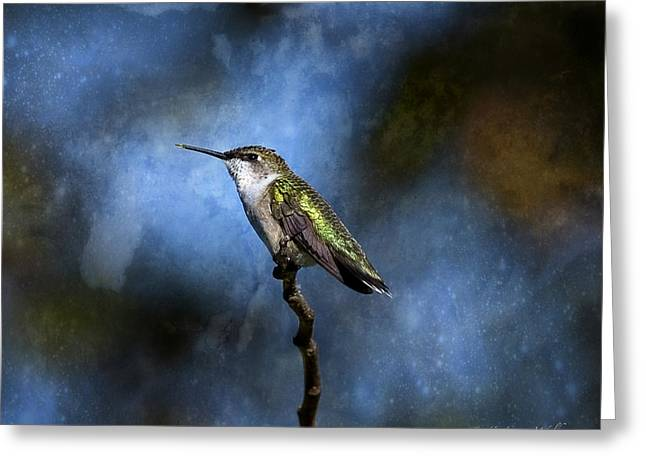 Greeting Card featuring the digital art Hummingbird Beauty by J Larry Walker