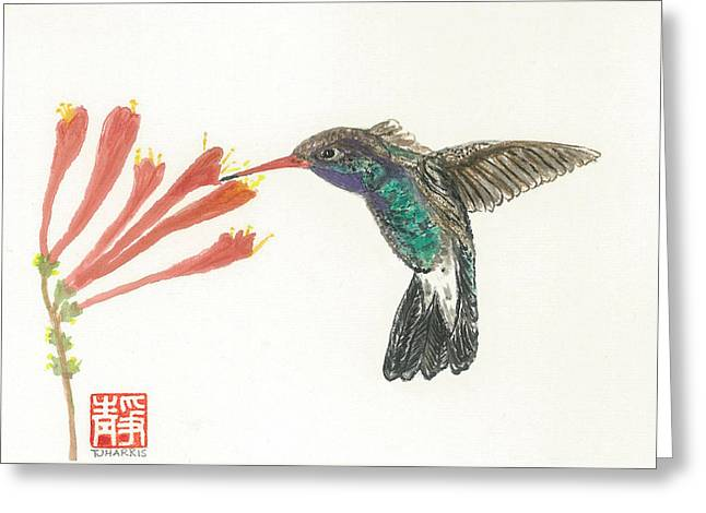 Hummingbird Flight Greeting Card