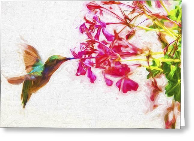 Hummingbird In Flight Digitally Painted Greeting Card by David Haskett