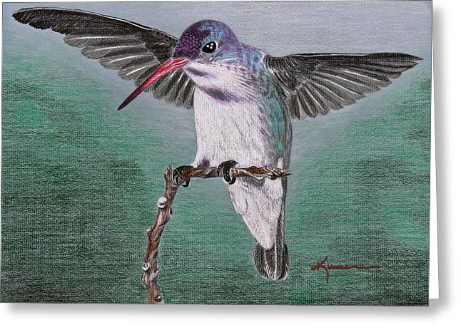 Greeting Card featuring the drawing Hummingbird by Kume Bryant