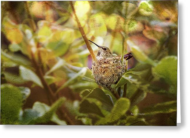 Hummingbird Mom In Nest Greeting Card by Angela A Stanton