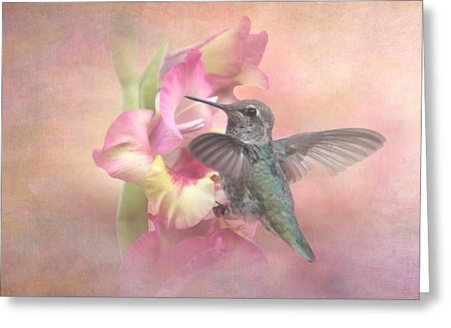 Hummingbirds Gladiola Greeting Card by Angie Vogel