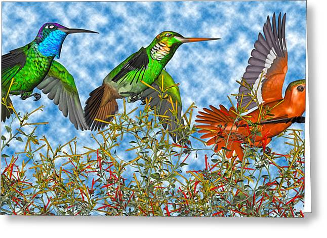 Hummingbirds Two Of Two Greeting Card