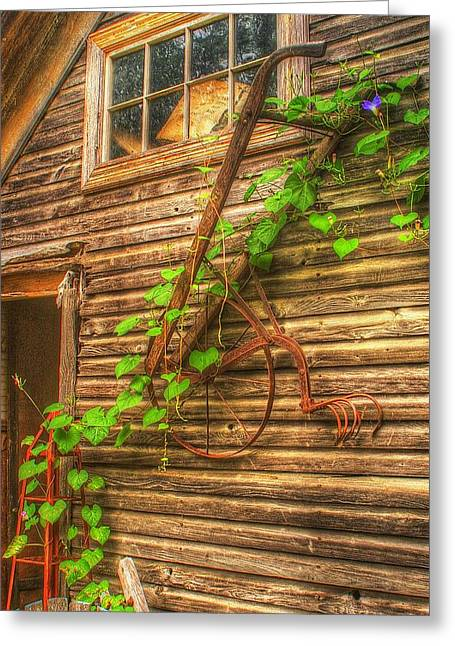 Hung To Rest Greeting Card by Randy Pollard