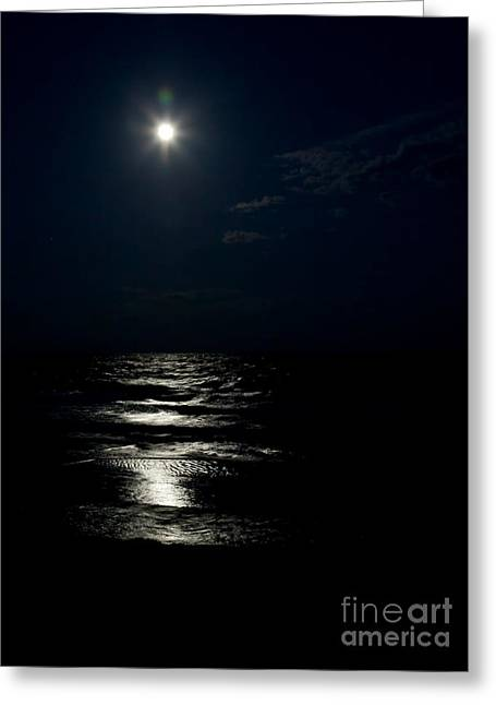 Hunter's Moon II Greeting Card by Michelle Wiarda