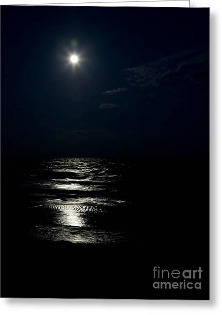 Hunter's Moon II Greeting Card by Michelle Wiarda