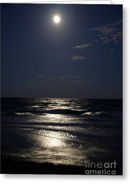Sea Moon Full Moon Greeting Cards - Hunters Moon IV Greeting Card by Michelle Wiarda