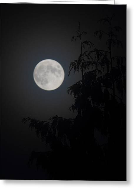 Hunters Moon Greeting Card by Randy Hall
