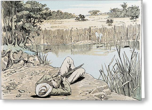 Hunting A Hippopotamus In South Africa Greeting Card by South African School